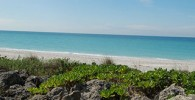 Casey Key Beach